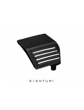 Eventuri Carbon Side Panel...